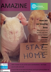 """Amazine front cover, featuring hairless guinea pigs with a handwritten sign saying """"stay home"""""""